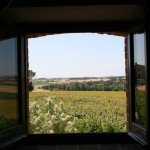 View_Window_Casa-Alessandra_Italy